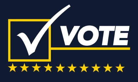 the word VOTE, with the V represented by a check mark on a ballot